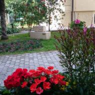 Dom Lovret - Stiglo je proljeće i u naš vrt! - Fotografija 1