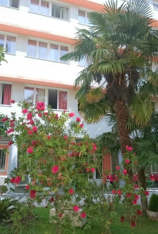Dom Lovret - Stiglo je proljeće i u naš vrt! - Fotografija 7