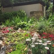 Dom Lovret - Stiglo je proljeće i u naš vrt! - Fotografija 11