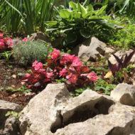 Dom Lovret - Stiglo je proljeće i u naš vrt! - Fotografija 13