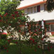 Dom Lovret - Stiglo je proljeće i u naš vrt! - Fotografija 14